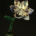 flower2small520