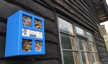 Bee box 3